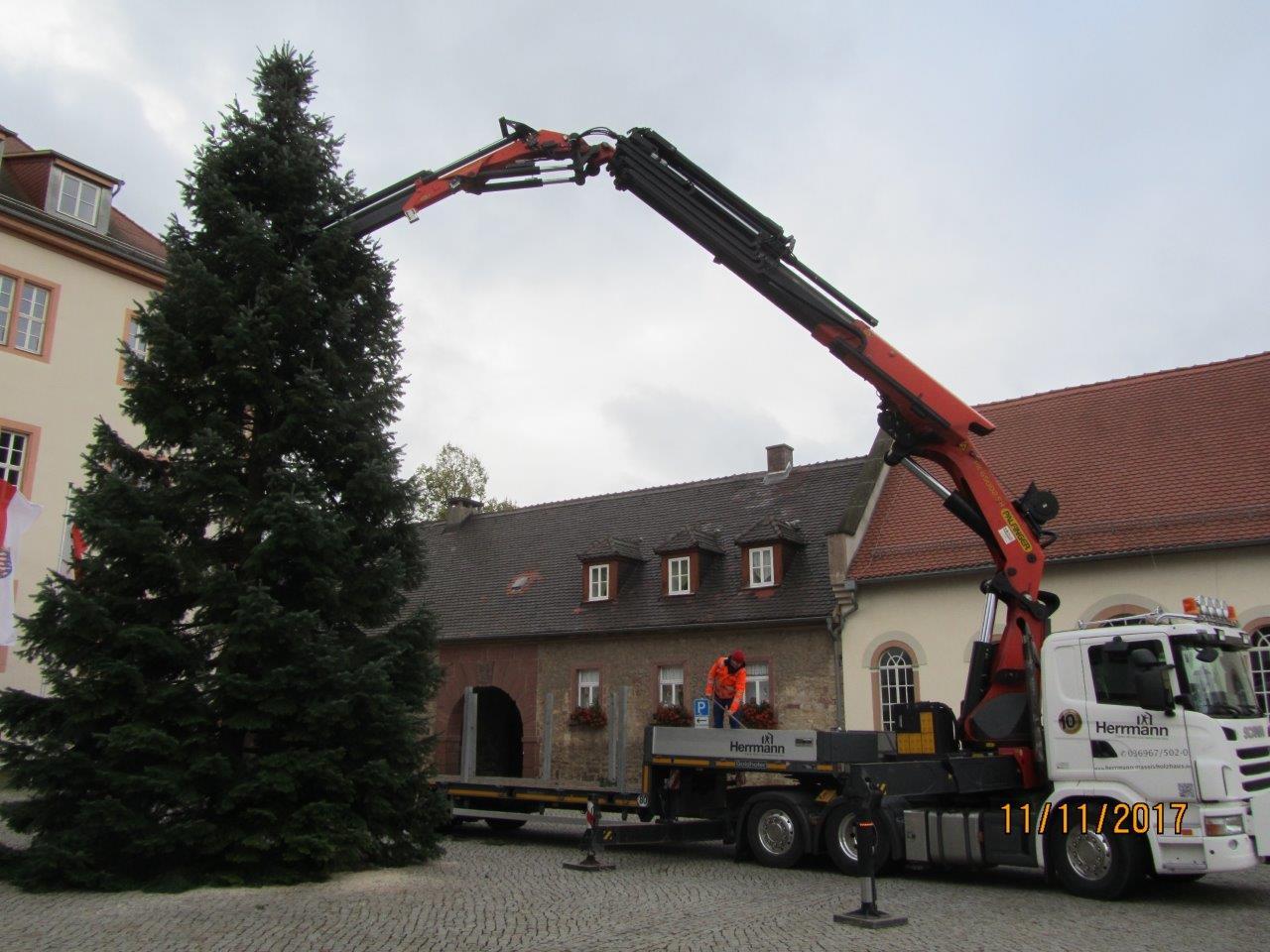 Herrmann Massivholzhaus größter weihnachtsbaum schmückt marktplatz